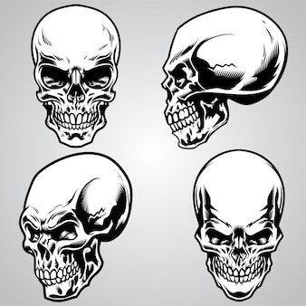 Set van schedel