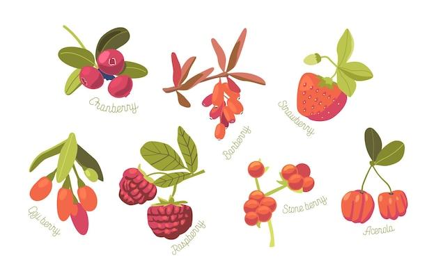 Set van seizoensgebonden zomertuin en wilde bessen aardbei, cranberry, framboos en steenbes met acerola en goji geïsoleerd op een witte achtergrond. cartoon vectorillustratie, pictogrammen, illustraties