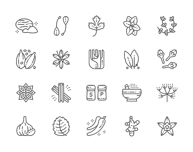 Set van spice line icons.