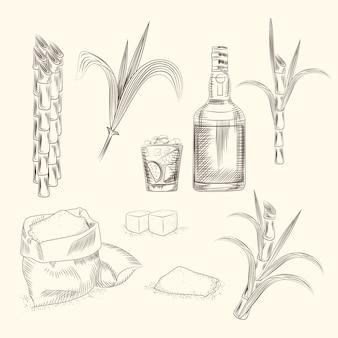Set van suikerriet