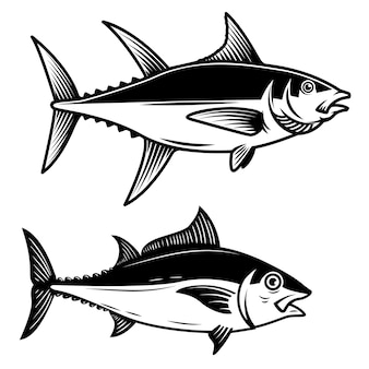 Set van tonijn vissen illustratie op witte achtergrond