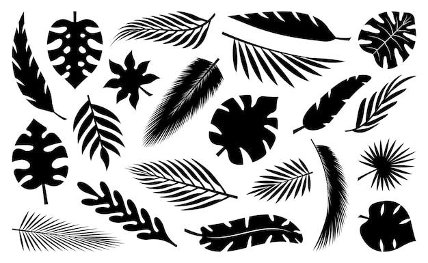 Set van tropische bladeren silhouetten collectie palmbladeren