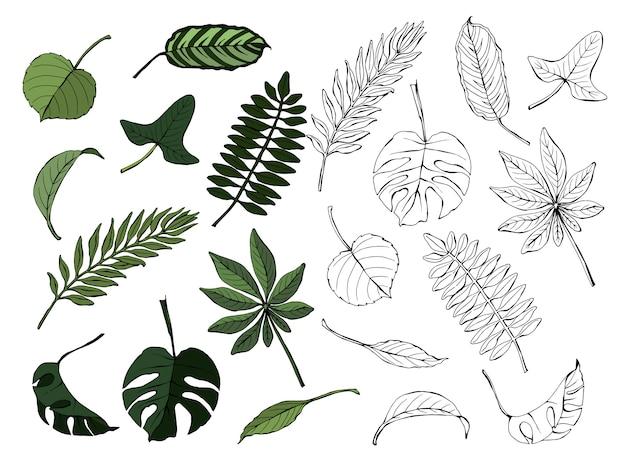 Set van tropische bladeren