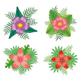 Set van tropische bloemen en bladeren planten