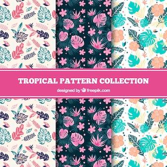 Set van tropische patronen met planten en kleurrijke bloemen