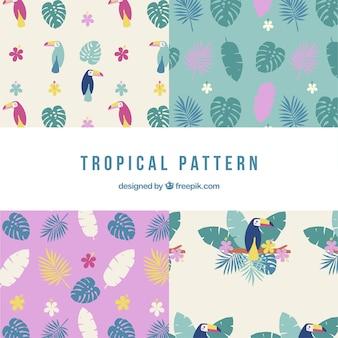Set van tropische patronen met planten en toekans in vlakke stijl
