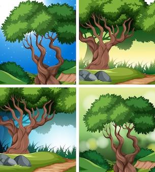 Set van tropische regenwoud achtergrond