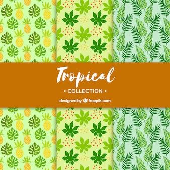 Set van tropische zomerpatronen met verschillende planten