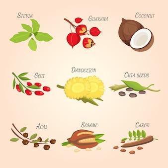 Set van vector cartoon superfoods. vers fruit schets achtergrond. illustratie voor uw ontwerp.