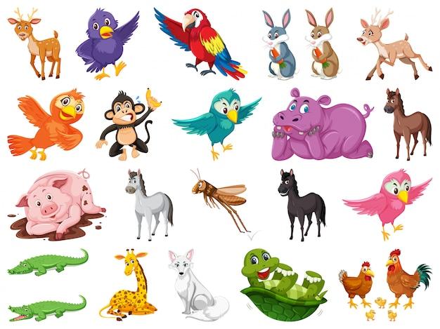 Set van veel schattige dieren