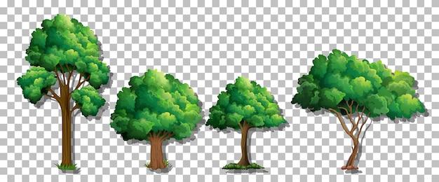 Set van verschillende bomen op transparante achtergrond