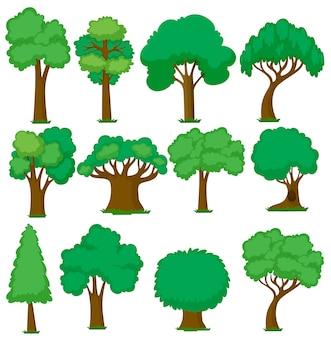 Set van verschillende bomen