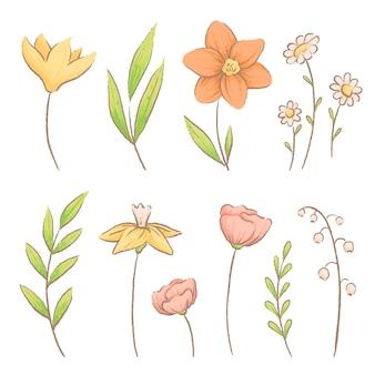 Set van verschillende lentebloemen en kruiden. krokussen, madeliefjes en lelietje-van-dalen.