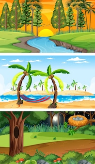 Set van verschillende soorten bos horizontale scènes Premium Vector