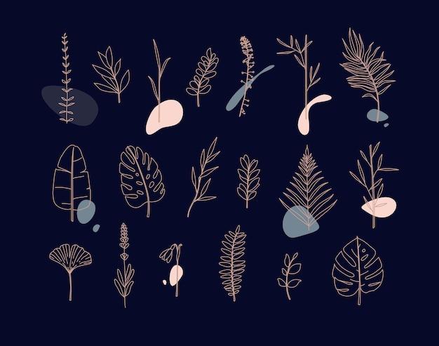 Set van verschillende vormen bladeren in minimalisme vlakke stijl