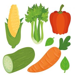 Set van verse en gezonde groenten