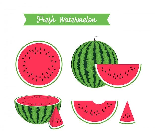 Set van verse rijpe watermeloen en plakjes. vectorafbeeldingen