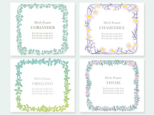 Set van vier frames met verschillende kruiden: koriander, kamille, oregano en tijm. illustratie. Premium Vector