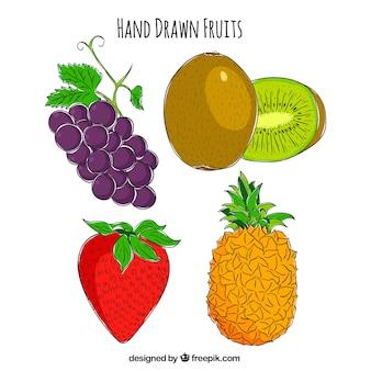 Set van vier heerlijke handgetekende vruchten