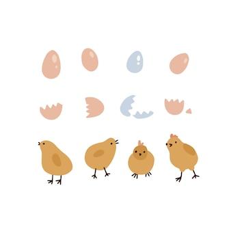 Set van vier schattige gele paaskippen eieren en schelpen geïsoleerd op een witte achtergrond kip hoed...