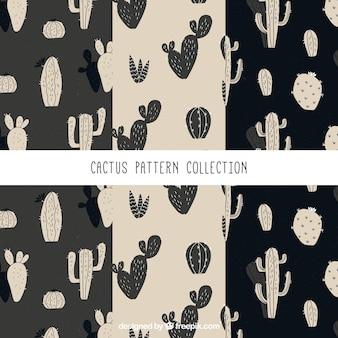 Set van vintage patronen van cactus tekeningen
