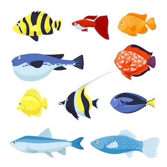 Set van vissen voor illustratie van aquarium-, zee- en rivierdieren