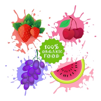 Set van vruchten over verf splash fresh juice logo natuurlijke boerderij producten concept