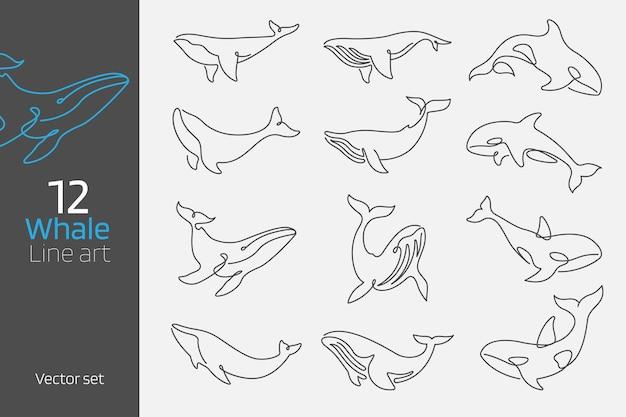 Set van walvis doorlopende lijn kunst vector illustratie minimale en contourlijnen concept