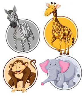 Set van wilde dieren cirkel banner