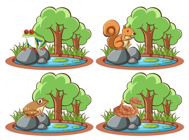 Set van wilde dieren in het park met vijver en boom