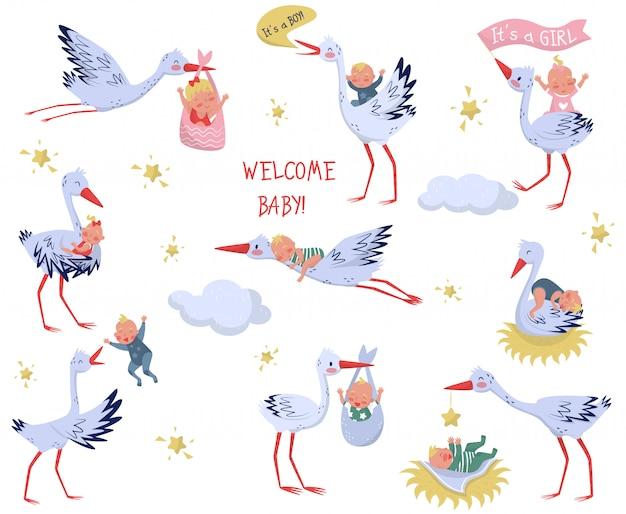 Set van witte ooievaars met baby's. mooie vogels en pasgeboren kinderen. elementen voor kinderboek of wenskaart