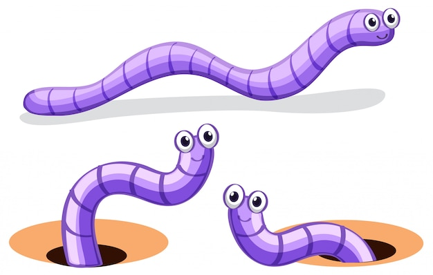 Set van worm karakter