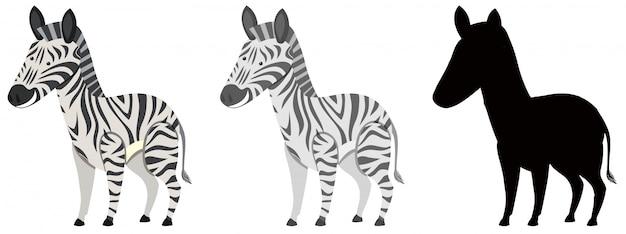Set van zebra karakter
