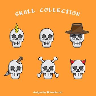 Set van zes grote schedels