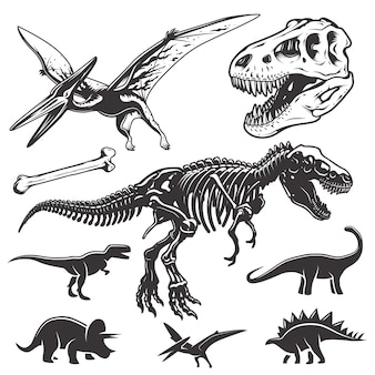Set van zwart-wit dinosaurussen. archeologische elementen. t-rex schedel en skelet. dinosaurussen pictogrammen.