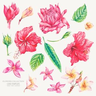 Set vintage bloemen tropische natuurlijke elementen