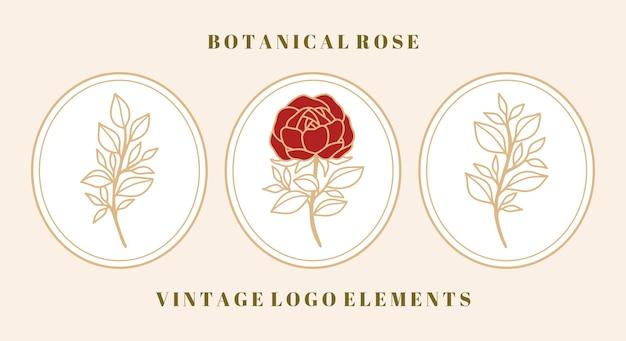 Set vintage botanische roze bloem en bladelement voor vrouwelijk schoonheidslogo en merk