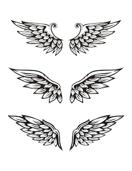 Set vleugel illustratie