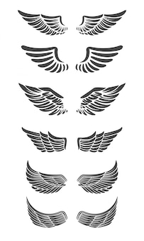 Set vleugels geïsoleerd op een witte achtergrond. ontwerpelementen voor logo, label, embleem, teken, merkmarkering.