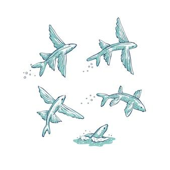 Set vliegende vissen springen, duiken en zwemmen.