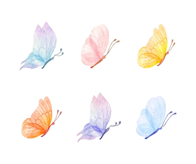 Set vliegende vlinders voor speciale gelegenheid