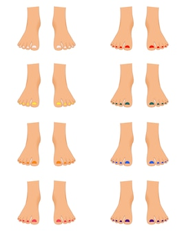 Set vrouwelijke voeten voor de aannemer