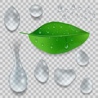 Set waterdruppels en groen blad met dauwdruppels geïsoleerd op transparante achtergrond.