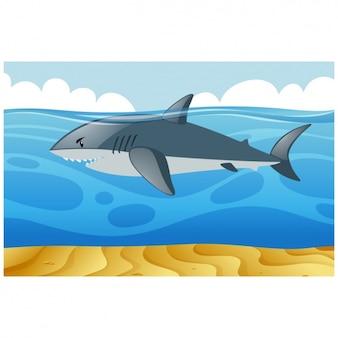 Shark achtergrond ontwerp