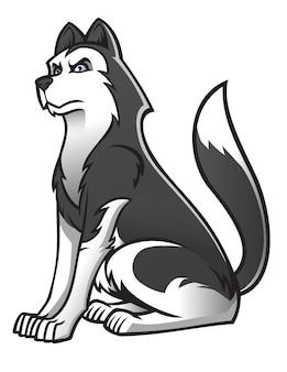 Siberische husky hond