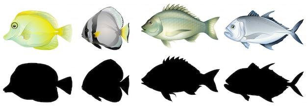 Silhouet, kleur en omtrekversie van vis