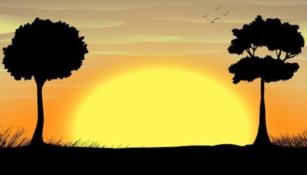 Silhouet veld