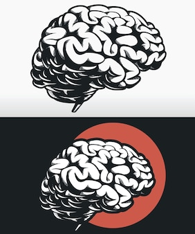 Silhouet zijprofiel hersenen overzicht zwart