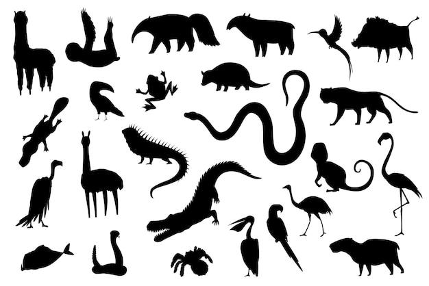 Silhouetdieren van zuid-amerika. natuur fauna collectie. geografische lokale fauna. zoogdieren die op continent leven. vector illustratie.