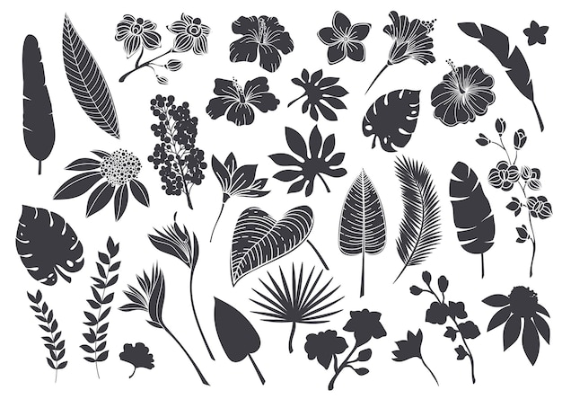 Silhouetten tropische bladeren en bloemen. monochroom glyph bos palm monstera fern hawaiiaanse bladeren, orchidee, hibiscus, plumeria bloem. plant tropische elementen vectorillustratie.